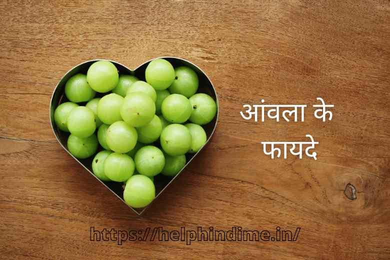 https://helphindime.in/amla-benefits-in-hindi/