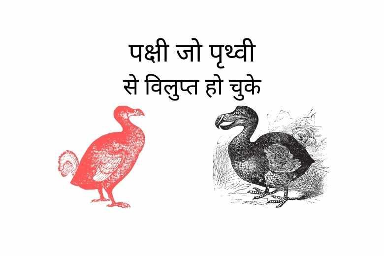 Extinct Birds in Hindi