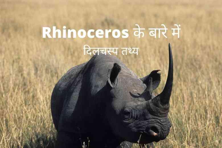 Rhinoceros Facts in Hindi